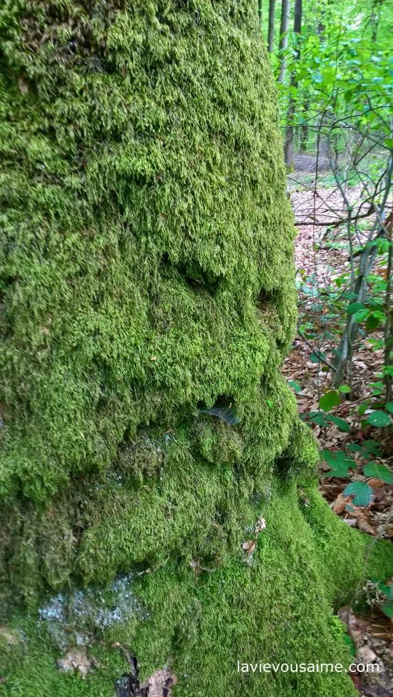 l homme vert - bois - niko lille
