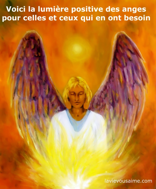 la lumiere des anges - niko lille