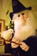 Le professeur Magicus et sa colombe